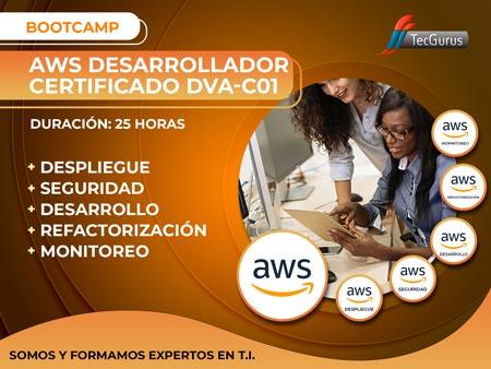 AWS Desarrollador Certificado DVA-C01