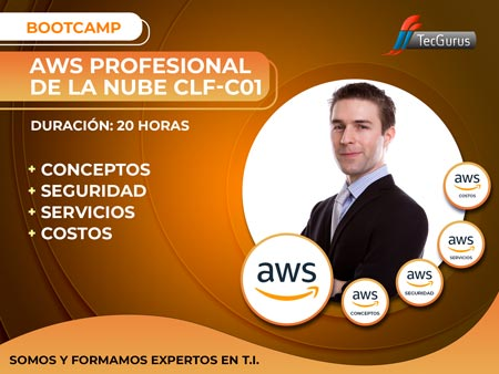 AWS Profesional de la Nube CLF-C01