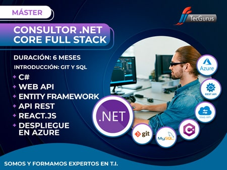 Carrera Consultor .NET Full Stack
